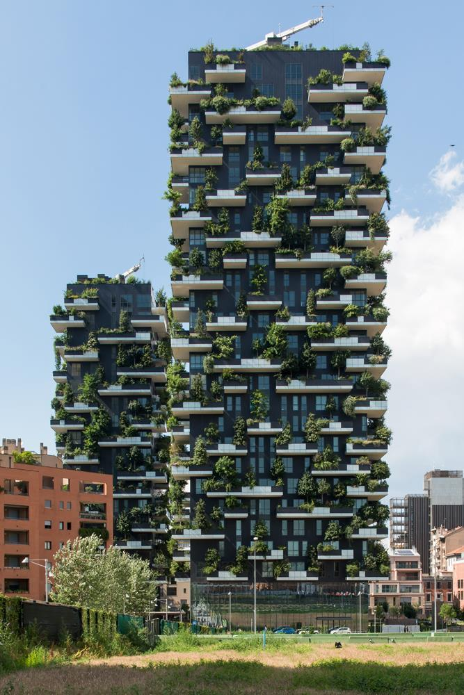 Bosco verticale: Photo 33