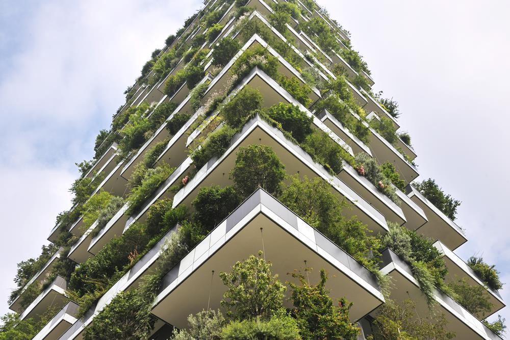 Bosco verticale: Photo 19