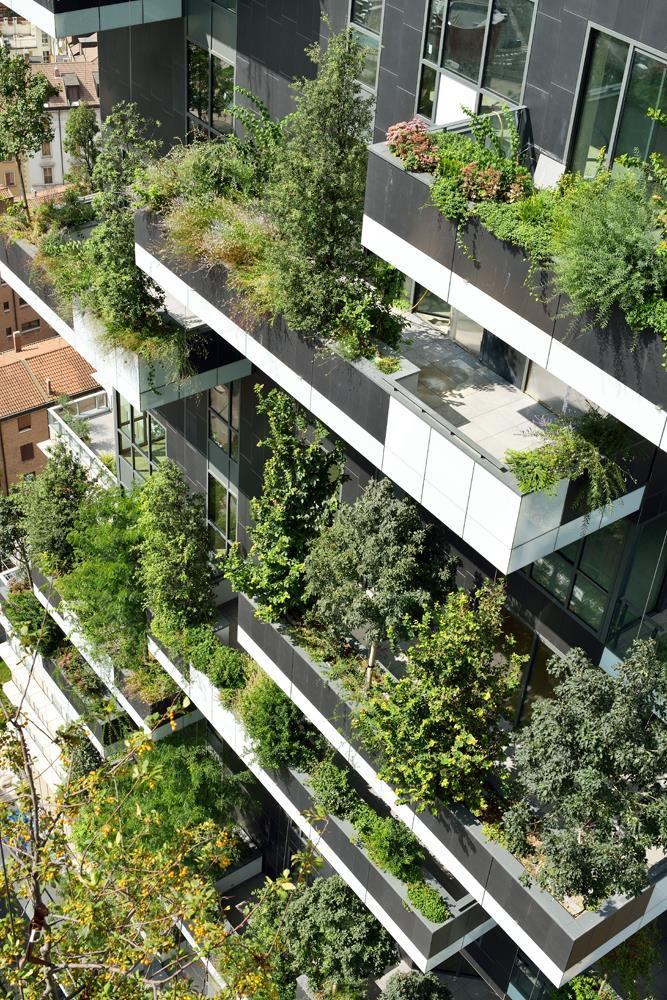 Bosco verticale: Photo 35