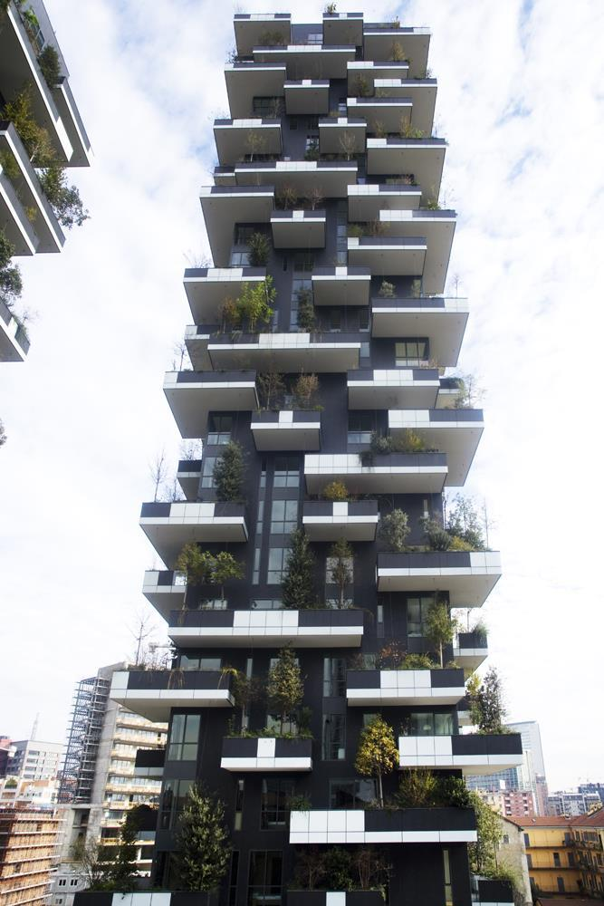 Bosco verticale: Photo 36