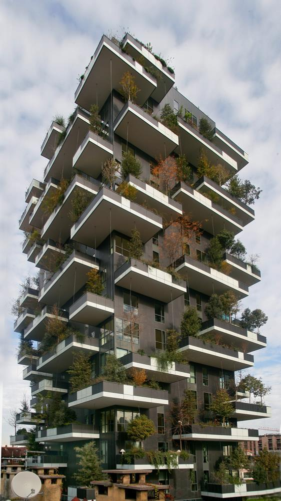 Bosco verticale: Photo 40