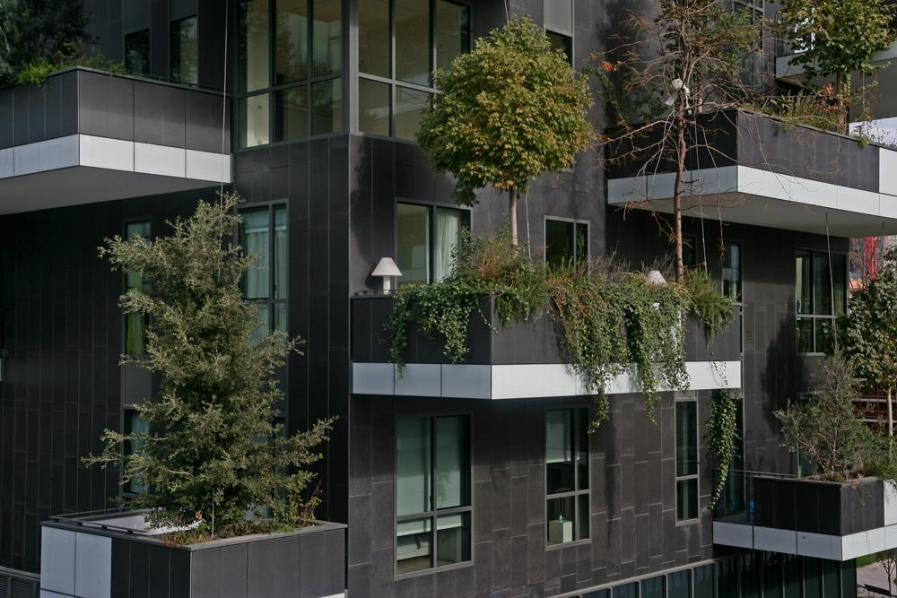 Bosco verticale: Photo 42