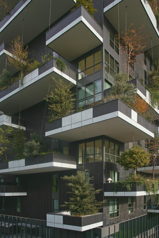 Bosco verticale: Photo 44
