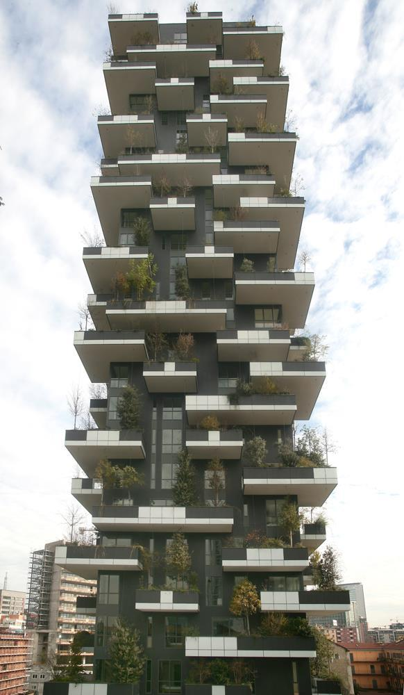 Vertical Forest: Photo 18