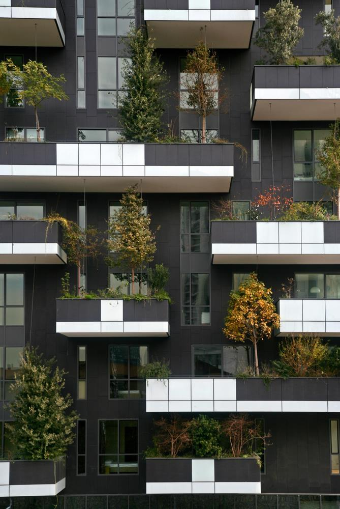 Bosco verticale: Photo 48
