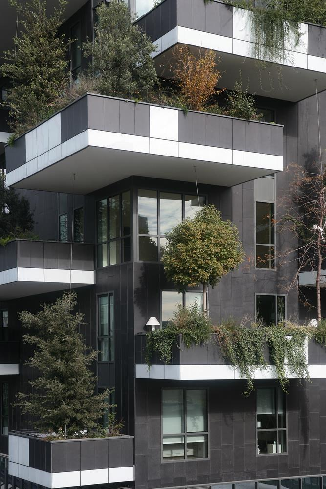 Bosco verticale: Photo 49