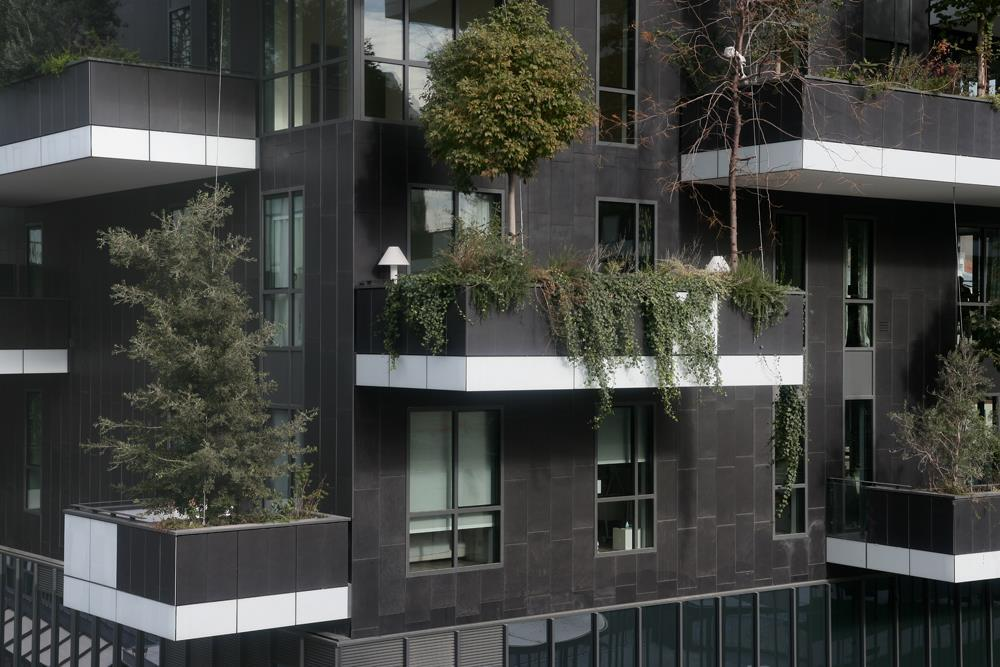 Vertical Forest: Photo 23