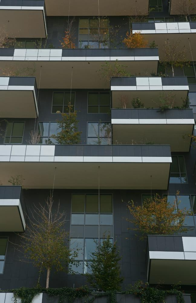 Bosco verticale: Photo 30