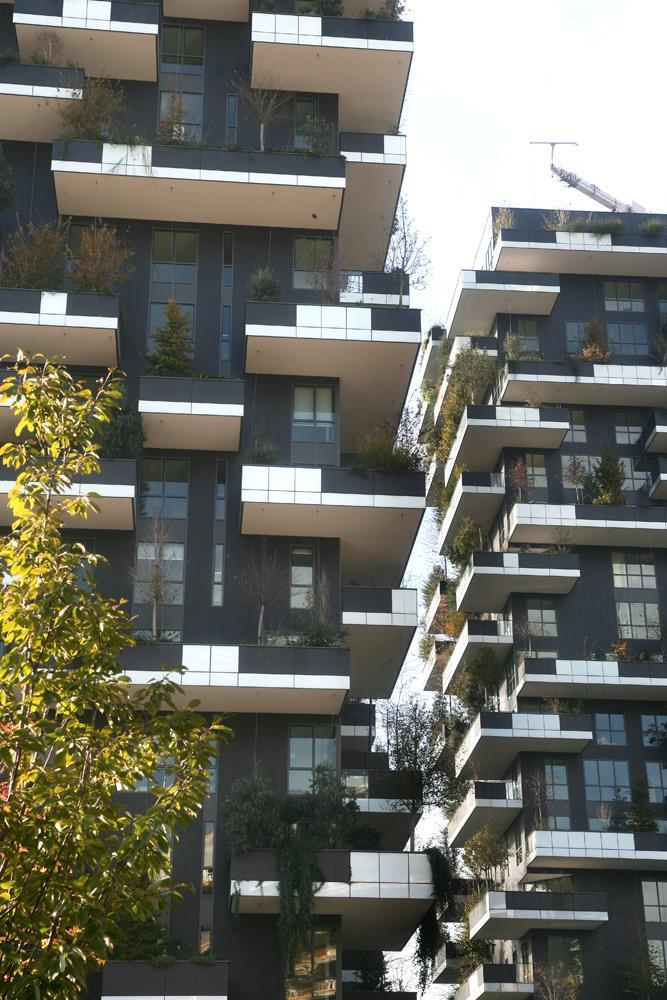 Bosco verticale: Photo 57