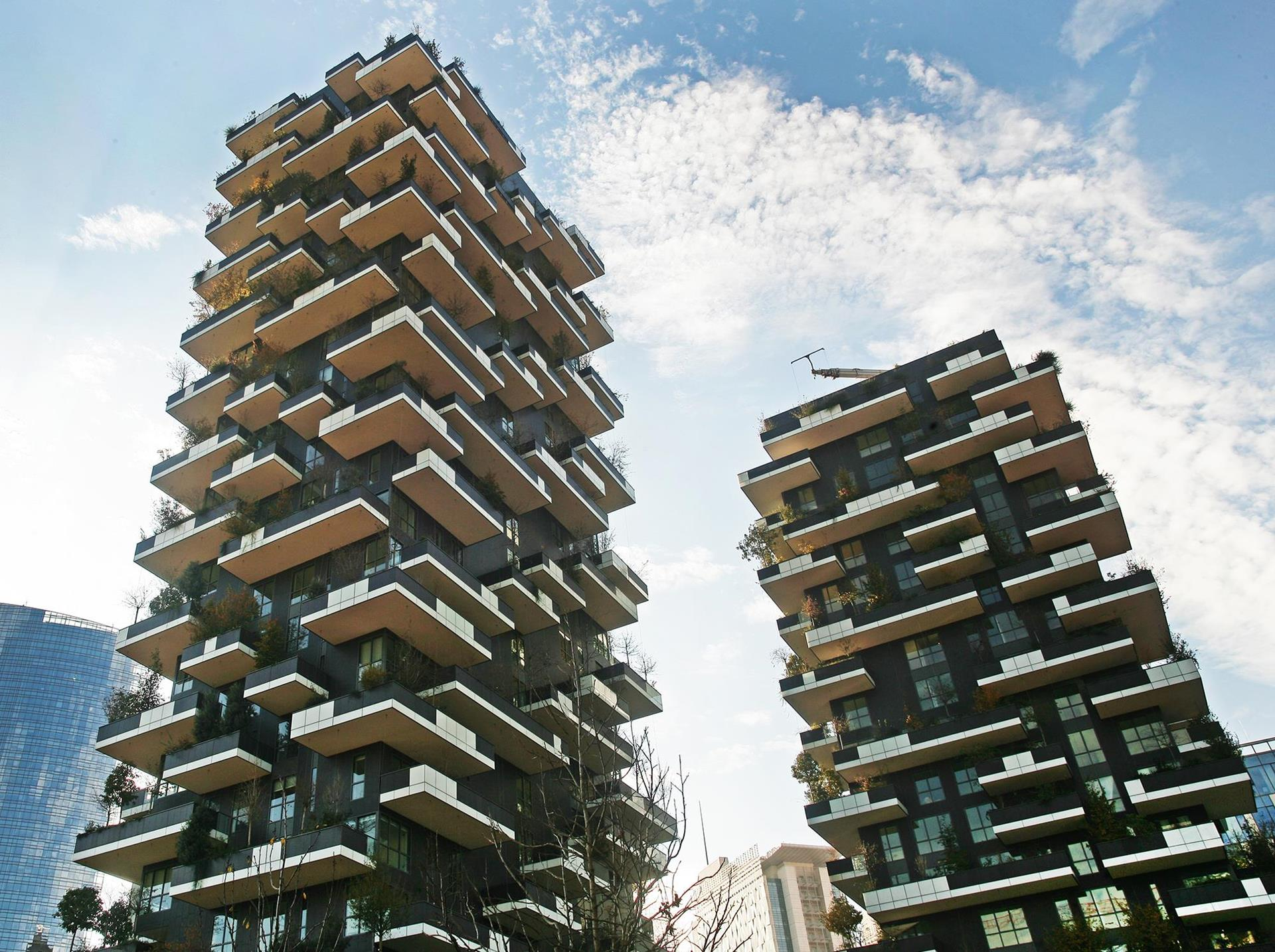 Bosco verticale: Photo 2