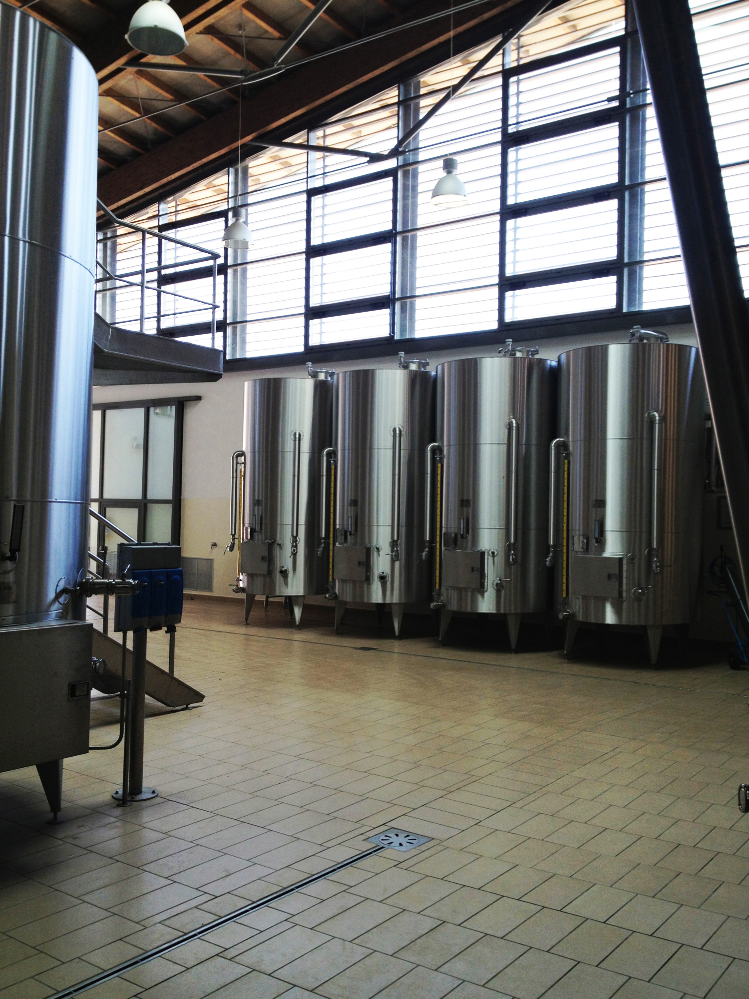 Cantine Antinori: Photo 8